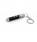 2 in 1 laser pointer